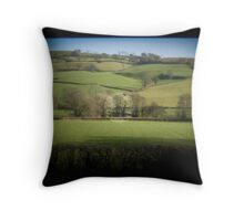 Fields Through the Viewfinder Throw Pillow