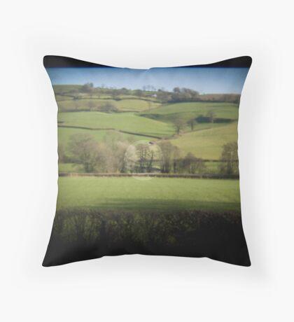 Fields Through the Viewfinder Throw Pillow