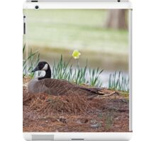 Canadian Goose with Eggs in Nest iPad Case/Skin