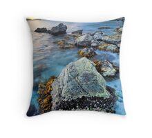 Francis Bay Throw Pillow