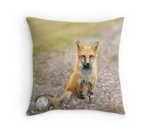 Red Fox In Wildflowers Throw Pillow