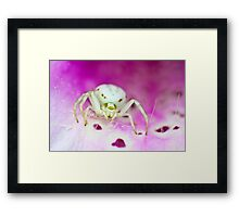 Knit one, pearl two Framed Print
