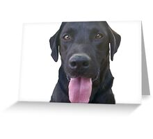 dogs, cartoon Greeting Card