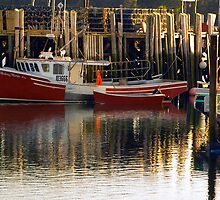 Fishing lobster ... holding in the Harbour by Roxane Bay