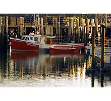 Fishing lobster ... holding in the Harbour Photographic Print