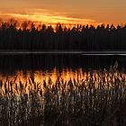 The Evening Twilight in The Early Spring by Irina777