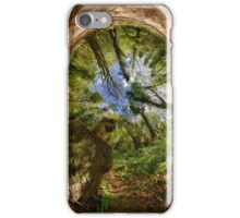 Squirrel Sculpture in Prehen Woods, Derry - Sky In iPhone Case/Skin