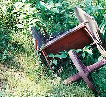 Old Red Wheel Barrow by Gene Liesau
