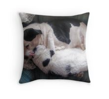 Sleeping Buddies Throw Pillow