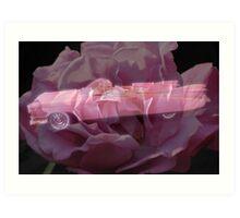 Pink Cadillac Rose Art Print
