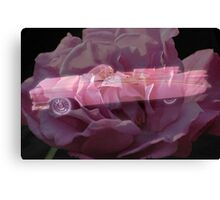 Pink Cadillac Rose Canvas Print