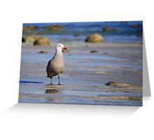 A Bad Company Gull Greeting Card