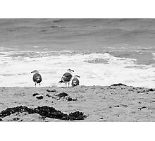 Three Stooges Photographic Print