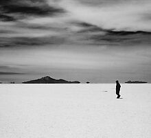 Salt Lakes by David Murphy