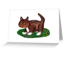 Grasshopper and Kitten Greeting Card