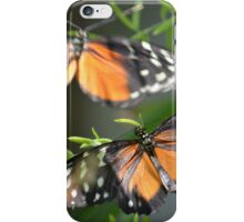 Butterfly Butterfly iPhone Case/Skin