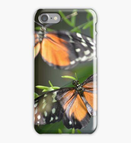 Butterfly Butterfly iPhone Case/Skin