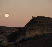 Twilight In The Badlands by Brian R. Ewing