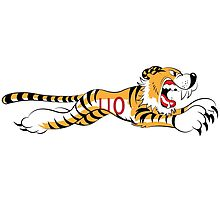 Triumph Tiger by RNobles