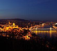 Budapest lights by Béla Török