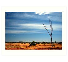 Our Vivid & Colourful Outback © Vicki Ferrari Photography Art Print