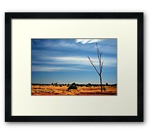 Our Vivid & Colourful Outback © Vicki Ferrari Photography Framed Print