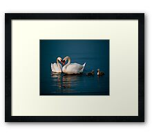 Swan Heart Framed Print