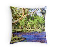 todd river 2 it flows Throw Pillow