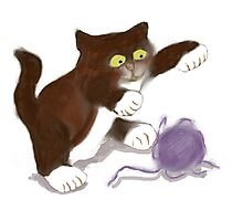 Kitten and the Purple Ball of Yarn Photographic Print