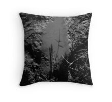 A Murky Future. Throw Pillow