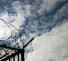 Barbwire / Blue Sky by hulldude30