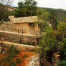 Mount Lebanon  by Joseph Najm