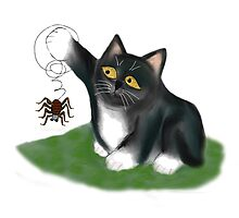 Spider hangs from a Kitten Paw by NineLivesStudio