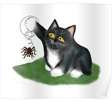 Spider hangs from a Kitten Paw Poster
