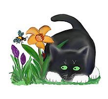 Bee and Kitten in Spring Garden Photographic Print