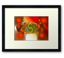 ©DA FS Some Like A Flag V1FX. Framed Print