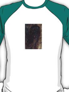 Hairy window 1 T-Shirt