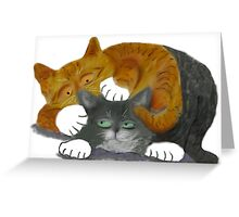 Cats Wrestling Greeting Card