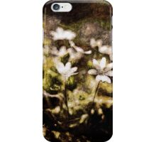 Endgraving Forest 16 iPhone Case/Skin