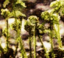 Endgraving Forest 15 Sticker