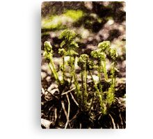 Endgraving Forest 15 Canvas Print