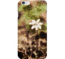 Endgraving Forest 14 iPhone Case/Skin