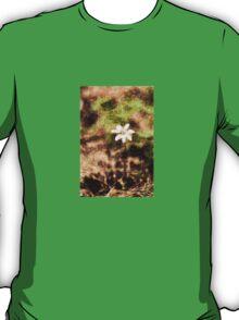 Endgraving Forest 14 T-Shirt