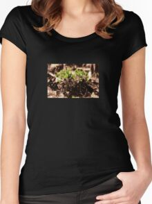 Endgraving Forest 13 Women's Fitted Scoop T-Shirt