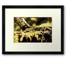 Endgraving Forest 3 Framed Print