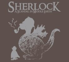 Sherlock: A Scandal in Middle-earth (Grey) by marv42