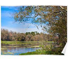 Wekiva River Florida Poster
