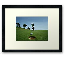 Cat Sinks A Putt Framed Print