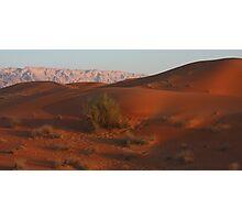 Desert Panorama 2 Photographic Print
