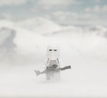 The Last Snowtrooper by Mike Stimpson